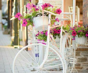 beautiful, bike, and flowers image