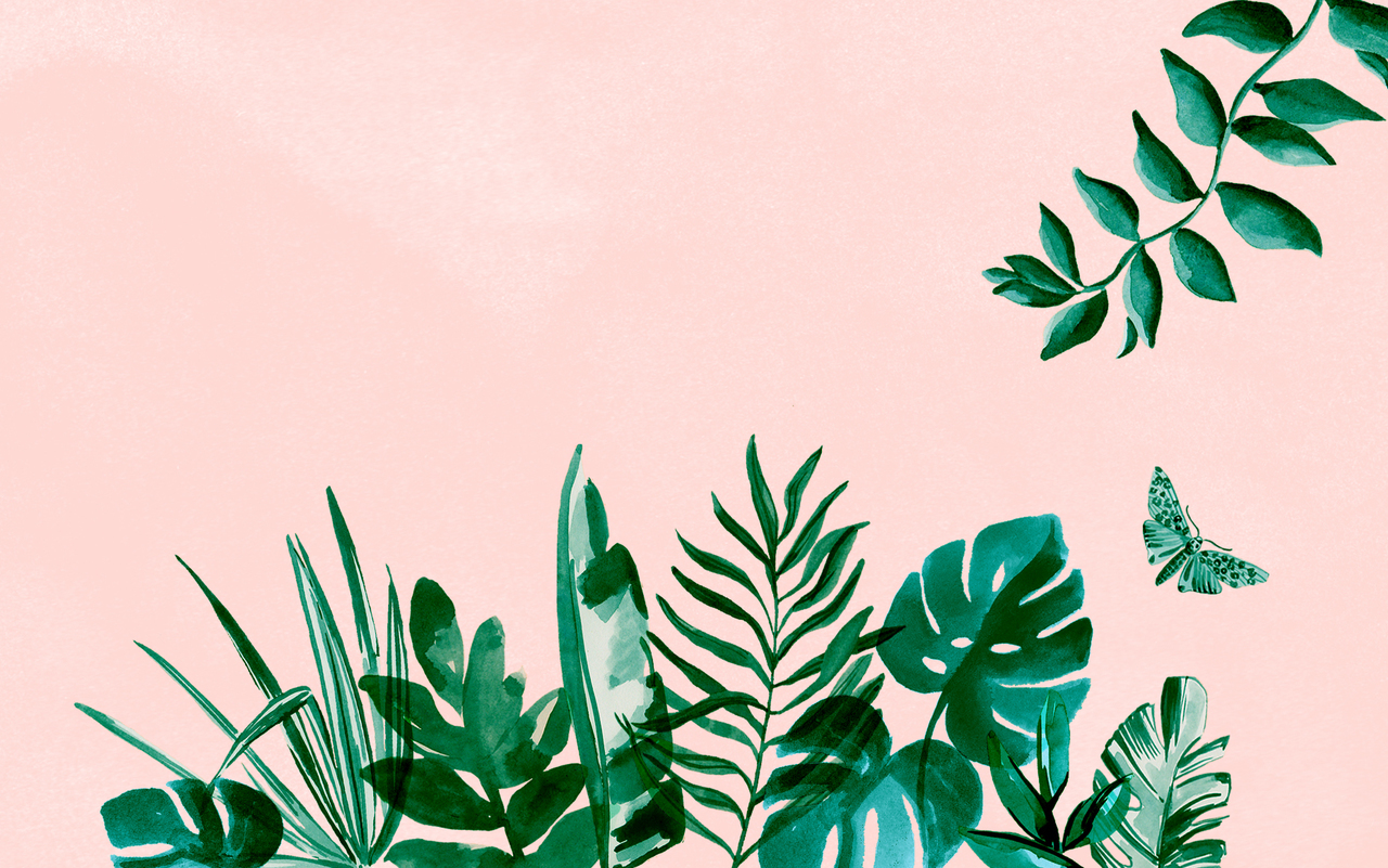 wallpaper, plants, and background image