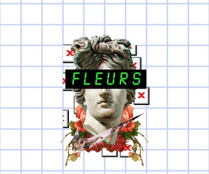 aesthetics, flowers, and grid image