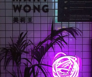 neon and purple image