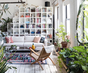 home, living room, and plants image