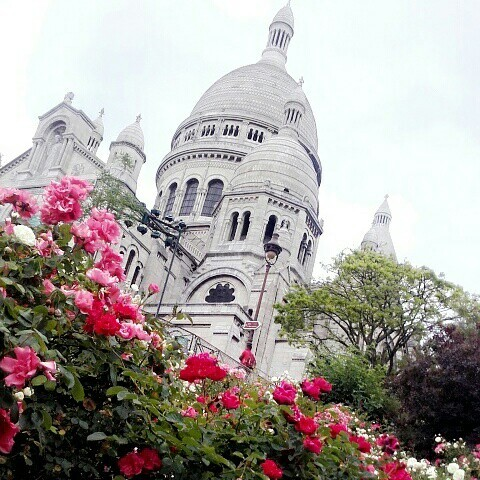 flowers, architecture, and great view image