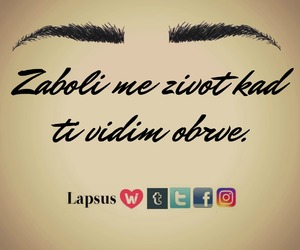 balkan, eyebrows, and lapsus image