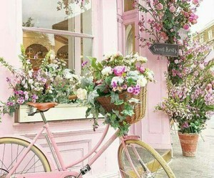 bicycle, country, and spring image