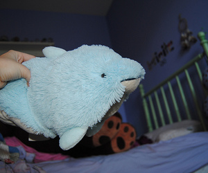 bedroom, dolphin, and cute image