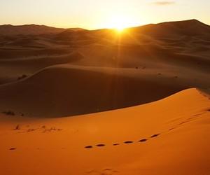 desert, east, and summer image
