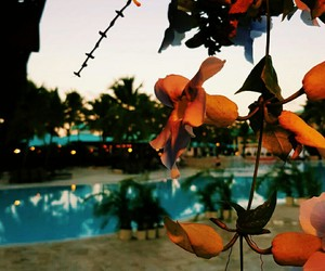 beach, beautiful, and hotel image
