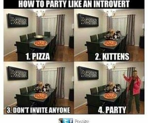 cat, fun, and introvert image