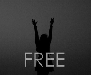 free, black, and black and white image