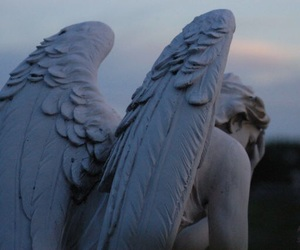 angel, statue, and wings image