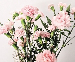 flowers, pink, and indie image