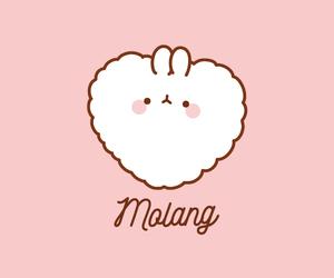 kawaii, cute, and molang image