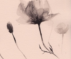 art, flower, and watercolour image