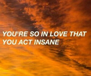 love, insane, and quotes image