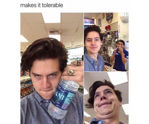 funny, meme, and cole sprouse image