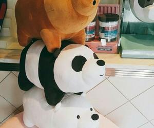 panda and polar image