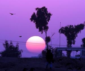 purple, sky, and nature image