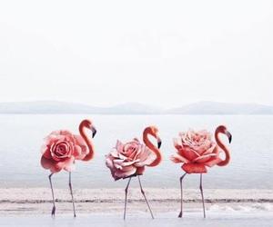 flamingo, art, and animal image