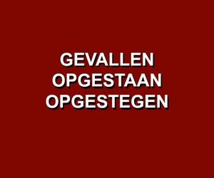 dutch, nederland, and nederlands image