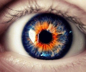 blue, eye, and orange image