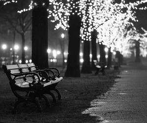 light, bench, and night image