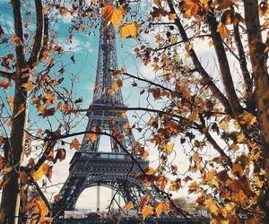 paris and autumn image