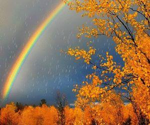 rain and rainbows image