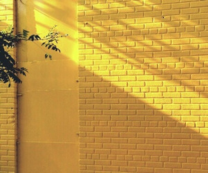 yellow, aesthetic, and wall image