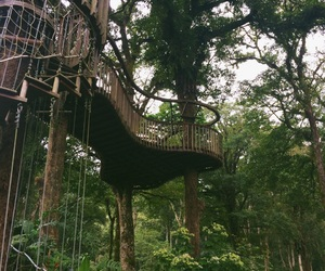 bali, nature, and treehouse image