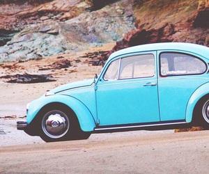 beach, blue, and bug image