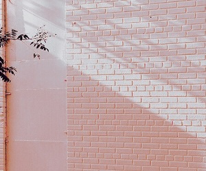 champagne, tint, and wall image