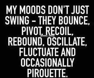 funny, moods, and mood swings image