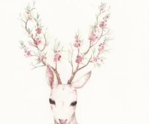 deer, flowers, and animal image