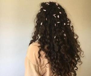 hair, petals, and yellow image
