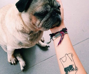dog, tattoo, and cute image