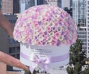 bucket, city, and flowers image