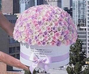 bucket, gift, and purple image