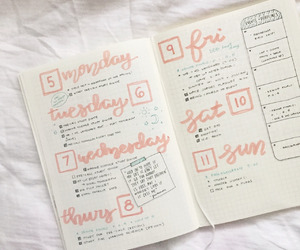 bullet journal, college, and notebook image