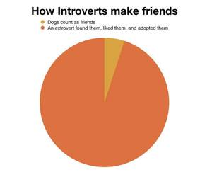 dogs, extrovert, and introvert image