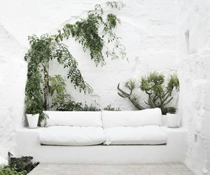 white, plants, and home image