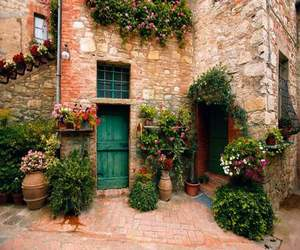 Tuscany, italy, and flowers image