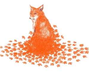 animals, fallen leaves, and foxes image