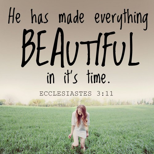 he has made everything beautiful in it s time bible picture
