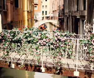 flowers, bridge, and venice image