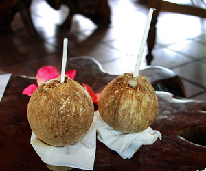 coconut, summer, and drink image