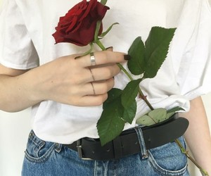 alternative, flowers, and rose image