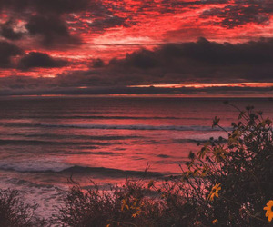 nature, red, and sunset image