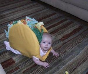 baby, cute, and taco image