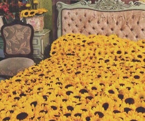 bed, sunflower, and flowers image