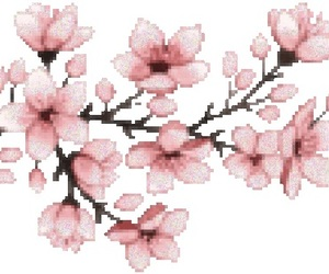 blossoms, pink, and png image